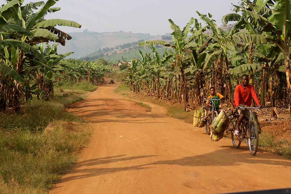 HC Uganda